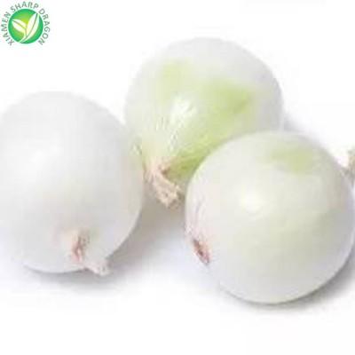 Iqf Exporters Wholesale Frozen White Onion With Price Ton